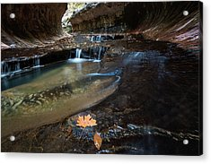 Fall Leaves In The Subway Acrylic Print by James Udall