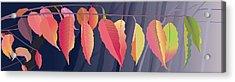 Fall Leaves Acrylic Print by Marian Federspiel