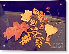 Fall Leaves On Granite Counter Acrylic Print by Annie Gibbons