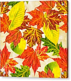 Acrylic Print featuring the mixed media Fall Leaves Pattern by Christina Rollo