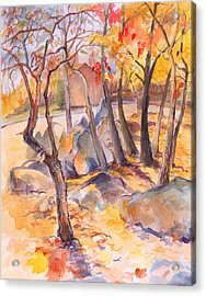 Acrylic Print featuring the painting Fall Light 2 by Nancy Watson