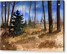 Fall Meadow Acrylic Print by Sean Seal