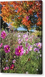 Fall Meadow With Wildfowers Acrylic Print by George Oze