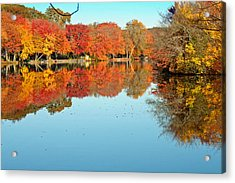 Fall Morning In East Lyme 1 Acrylic Print by Gerald Mitchell