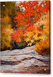 Fall Mountain Foliage Acrylic Print