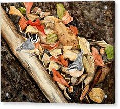 Fall Nuthatch Pair Acrylic Print