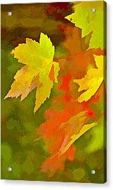 Fall Of Leaf Acrylic Print
