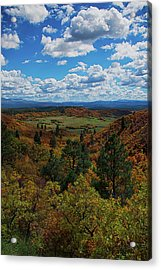 Fall On Four Mile Road Acrylic Print