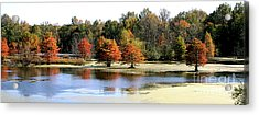 Fall On The Muscatatuck - Southern Indiana Acrylic Print