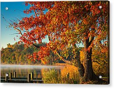 Fall On The Patuxent Acrylic Print