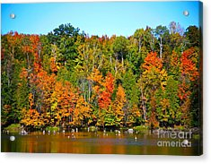 Fall On The Water Acrylic Print by Robert Pearson