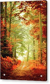 Fall Painting Acrylic Print