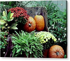 Acrylic Print featuring the photograph Fall Patio Arrangement by Robert D McBain