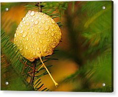 Fall Raindrops Acrylic Print
