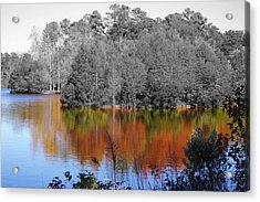 Fall Reflection Acrylic Print by Don Prioleau