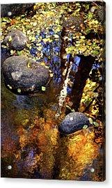 Fall Reflections Ashland Creek Acrylic Print by Jim Nelson