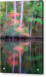 Acrylic Print featuring the photograph Fall Reflections by Bob Decker