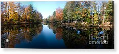 Fall Reflections Acrylic Print by David Bishop