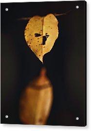Fall Reflections Acrylic Print by Eduard Moldoveanu