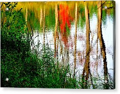 Acrylic Print featuring the photograph Fall Reflections by Elfriede Fulda