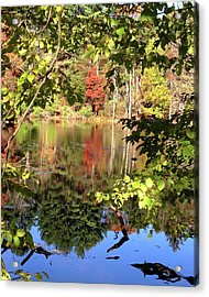 Fall Reflections Acrylic Print by Nancy Landry