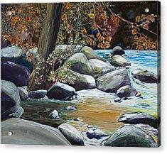 Fall Reflections Acrylic Print by Sharole Ewing