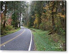Fall Road Washington Acrylic Print