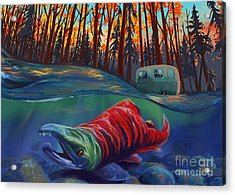 Fall Salmon Fishing Acrylic Print