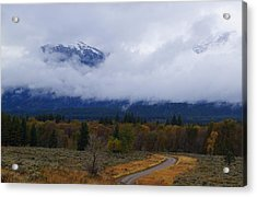 Fall Season's Last Stand Acrylic Print