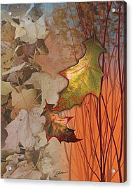 Fall Spectrum Acrylic Print by Harold Shull