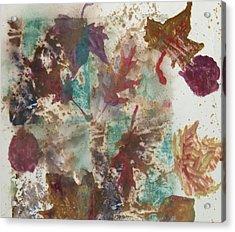 Fall Treasures Acrylic Print by Claudia Smaletz