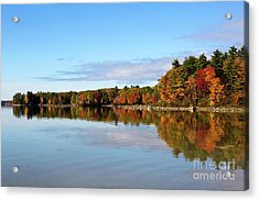 Fall Tree Reflections Lake Sabago Maine Acrylic Print