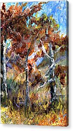 Fall Trees Acrylic Print by Jimmie Trotter