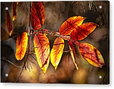 Fall Trees Number One Acrylic Print by Michael Putnam