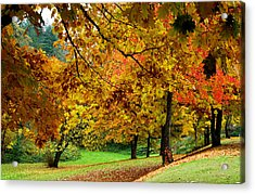 Fall Acrylic Print by Val Jolley