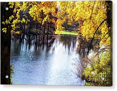 Fall Yellow Boarder Acrylic Print