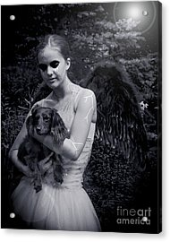 Acrylic Print featuring the photograph Fallen Angel by Rebecca Margraf