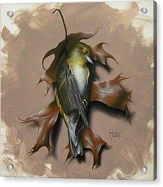 Fallen Finch Acrylic Print by Timothy Jones