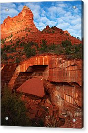 Acrylic Print featuring the photograph Fallen by James Peterson