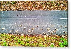 Fallen Leaves Acrylic Print by Tom Gowanlock