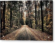 Fallen Road Acrylic Print by Nathan Larson