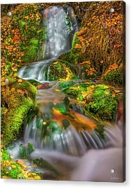 Fallert Creek Autumn Acrylic Print by Leland D Howard