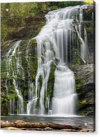 Falling Dream Acrylic Print by Darrell Young