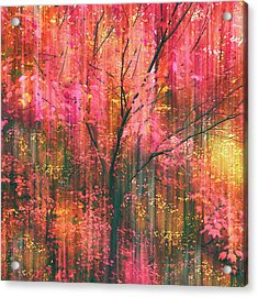 Acrylic Print featuring the photograph Falling Into Autumn by Jessica Jenney