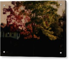 Falling Into Fall From The Past Acrylic Print by Martin Morehead