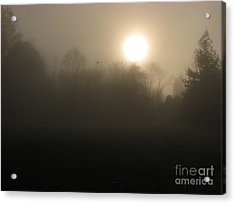 Falling Leaf In Morning Fog Acrylic Print by Misha Bean