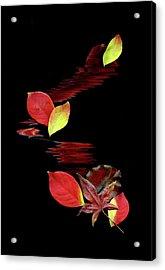 Falling Leaves Acrylic Print by Gerlinde Keating - Keating Associates Inc