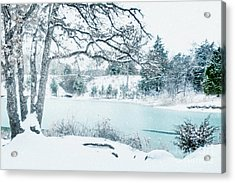 Falling Snow At Lake Murray Acrylic Print by Tamyra Ayles