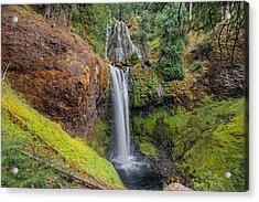 Falls Creek Falls Acrylic Print by David Gn