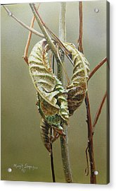 Acrylic Print featuring the painting Fall's Embrace  by Margit Sampogna